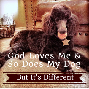 God Loves Me,And So Does My Dog. But 2